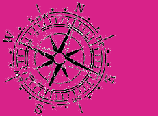 compass on pink background small compass on pink background   small